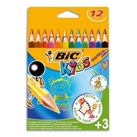 BIC E/12 CRAY EVOLUTION TRIANG 8297356