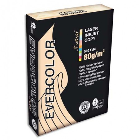 CLF R/500F EVERCOLOR 80G A4 SAUMON 40015