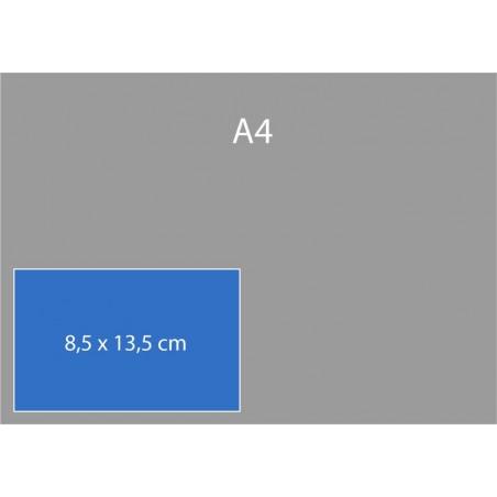 Cartes de correspondance 8,5 x 13,5 cm