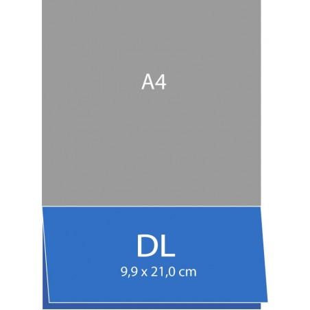 Cartes de visite pliées (bord long) 9,9 x 21 cm